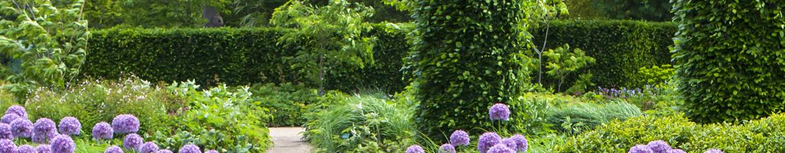 Hagen vormen de ruggengraat van de tuin