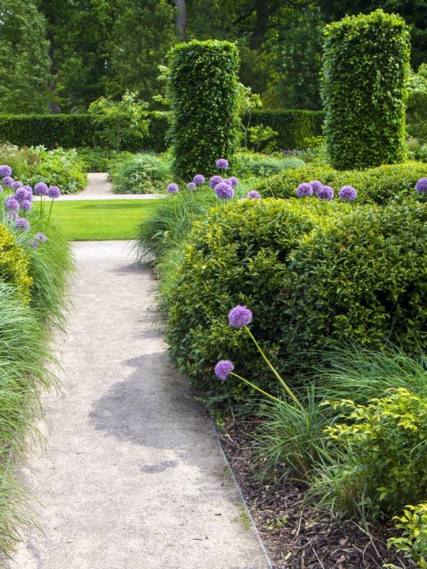 In deze tuin vormen haagelementen en vormsnoei de achtergrond voor kleurrijke borders