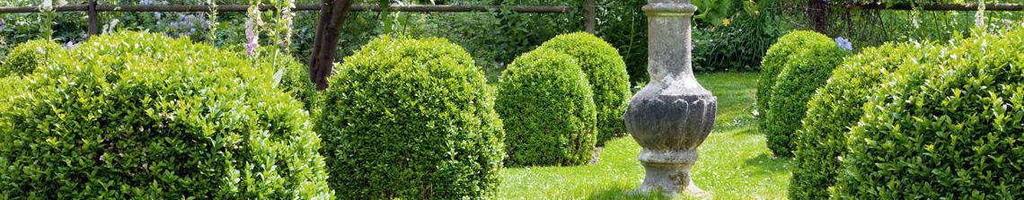 Buxusvormen passen bij uitstek in een tuin met een formele stijl of Franse stijl
