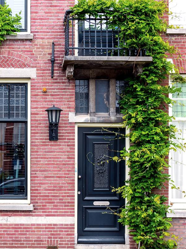 Klimplanten nemen relatief weinig plek in beslag zodat ze tegen de voorzijde van het huis geplaatst kunnen worden