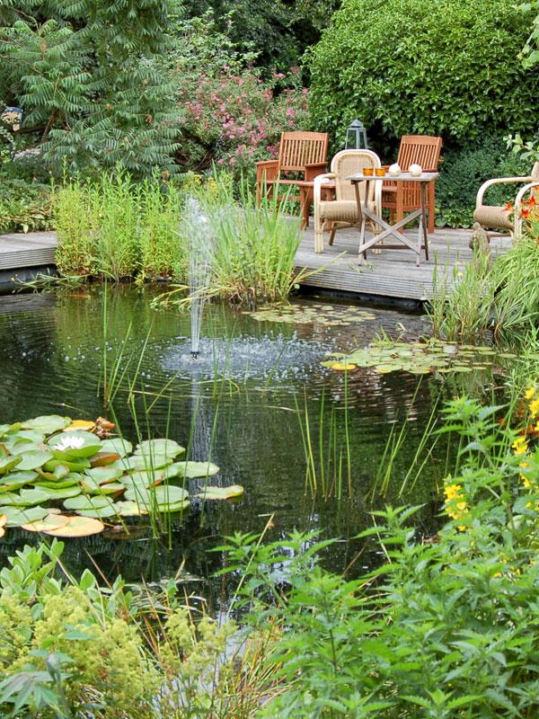 Planten zorgen voor een natuurlijk beeld van de vijver en dragen bij aan de waterkwaliteit
